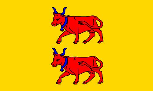 drapeau_bearn